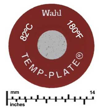 temp position